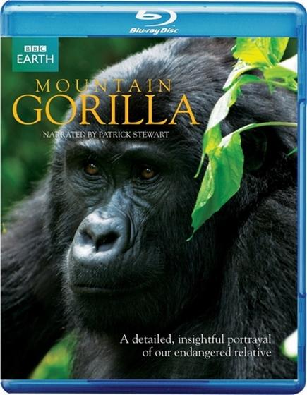 Picture of BBC Mountain Gorilla (2010)