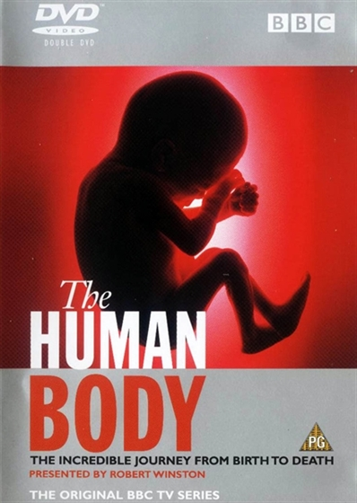 Picture of BBC The Human Body
