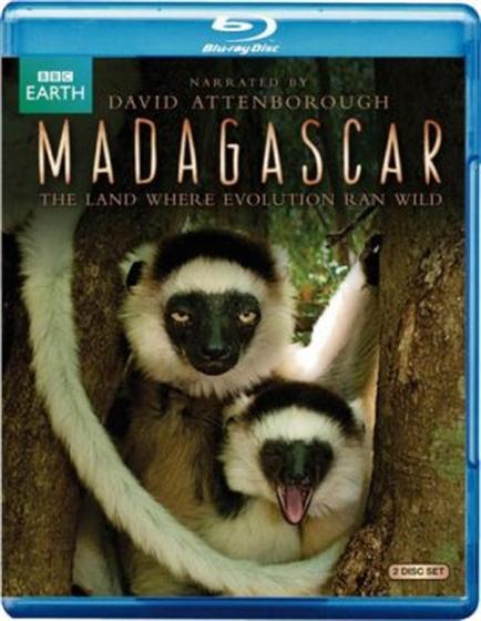 Picture of BBC Madagascar