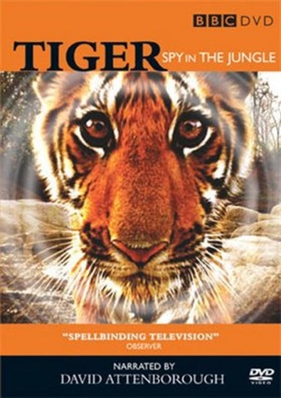 Picture of BBC Tiger