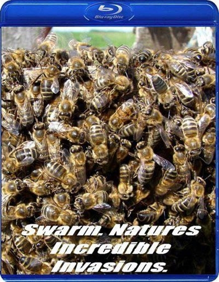 Picture of BBC Swarm Natures Incredible Invasions