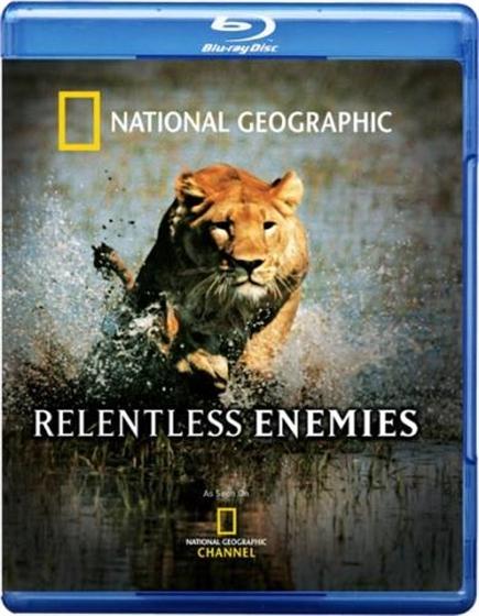 Picture of Relentless Enemies