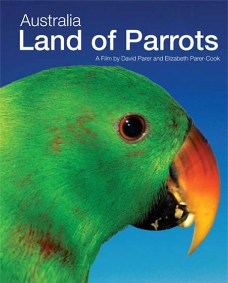 Picture of Australia Land Of Parrots