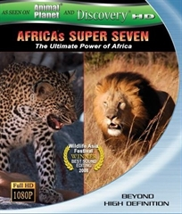 Picture of Africa's Super Seven (2008)