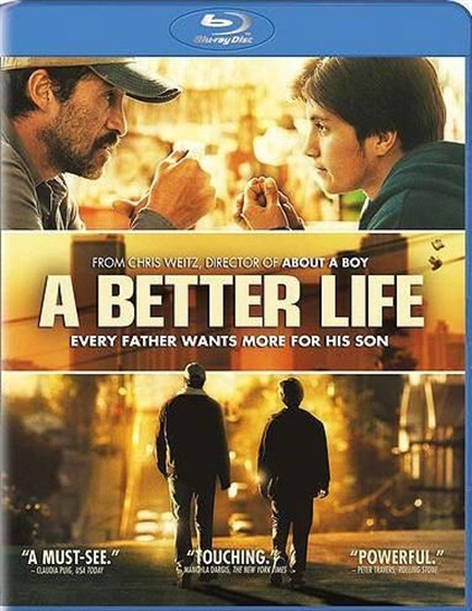 Picture of A Better Life LIMITED