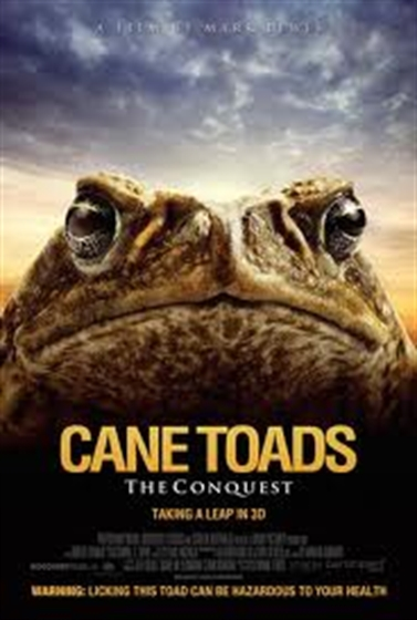 Picture of Cane Toads The Conquest 3D