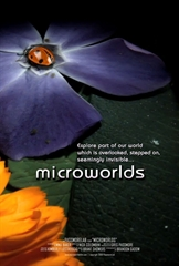 Picture of Microworlds 3D