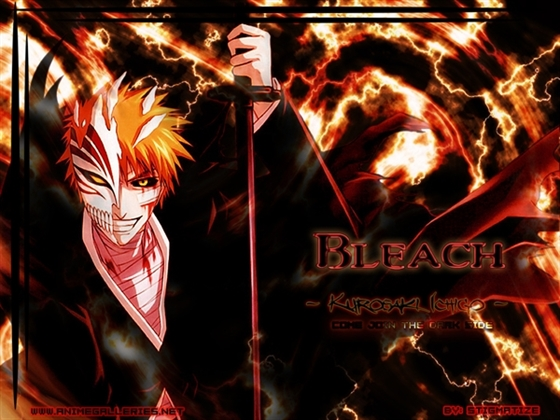 Picture of Bleach Part7