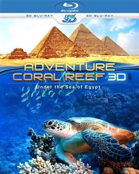 Picture of Adventure Coral Reef : Under the Sea of Egypt  3D and 2D [2012] Original