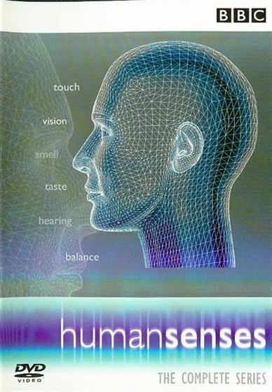 Picture of human senses