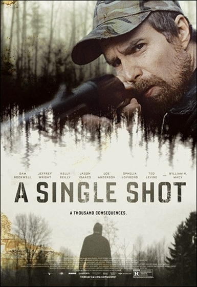 Picture of A Single Shot [2013]