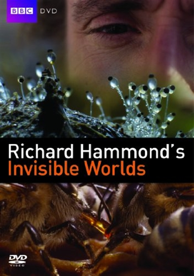 Picture of Invisible Worlds