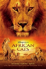 Picture of African Cats - HD