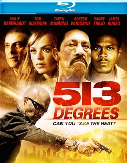 Picture of 513 Degrees [2013]