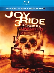 Picture of Joy Ride 3 [2014]