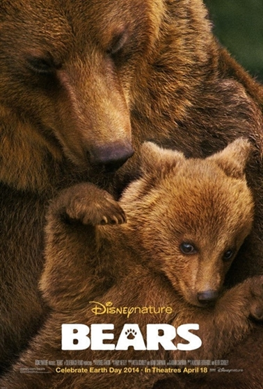 Picture of Bears 2014 [Bluray]