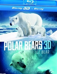 Picture of Polar Bears A Summer Odyssey 3D and 2D Original