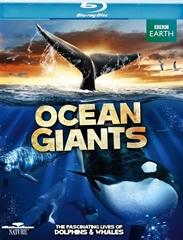 Picture of Ocean Giants 3D and 2D Original