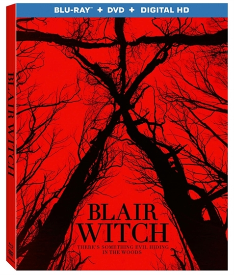 Picture of Blair Witch [2016]