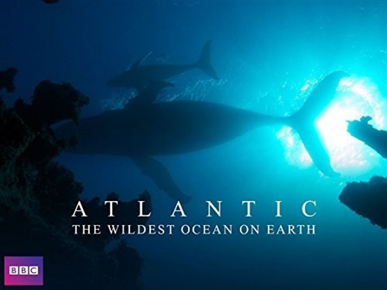 Picture of Atlantic The Wildest Ocean on Earth - From Heaven to Hell [Bluray]
