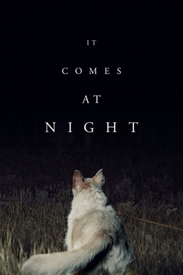 Picture of It Comes at Night [2017]