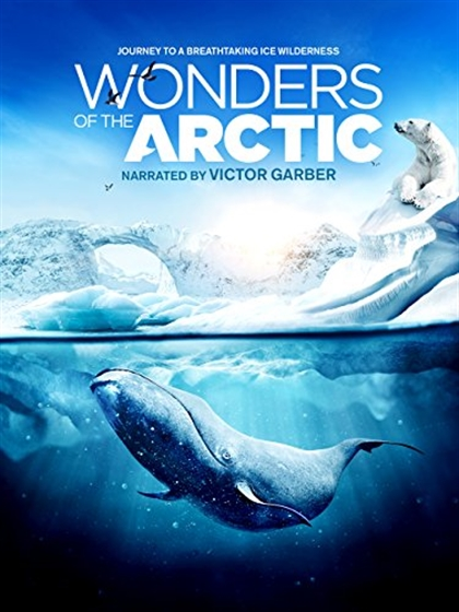 Picture of IMAX - Wonders of the Arctic 3D + 2D Original