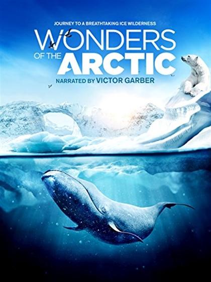 Picture of IMAX - Wonders of the Arctic 3D + 2D Original
