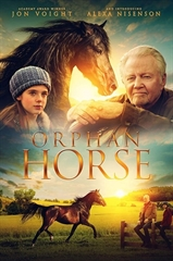 Picture of Orphan Horse [2018]