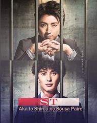 Picture of ST Aka to Shiro no Sosa Fairu [HD]