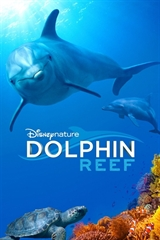 Picture of Dolphin Reef [2020] 4K Ultra HD